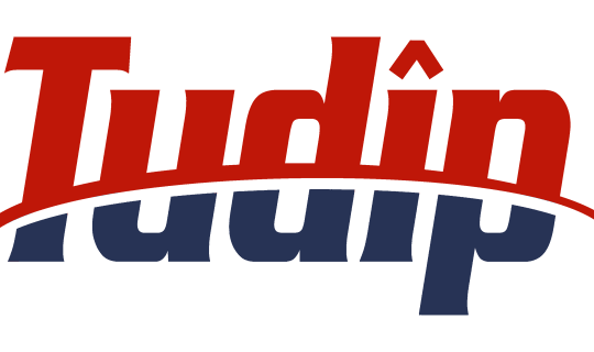Tudip-Logo_USE_deep_blue_red-540x320-min