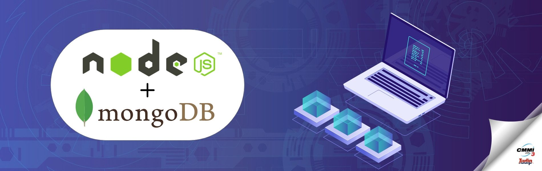 The_best_way_to_Integrate_the_Node_JS_Application_with_MongoDB_website