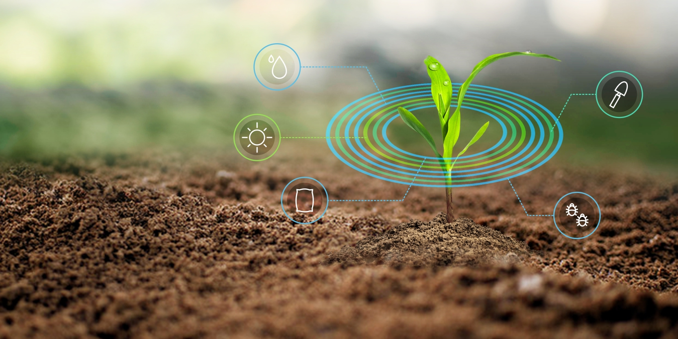 banner-image-agriculture-1